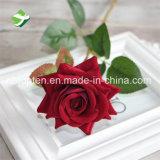 Kunstmatige Rozen van China van de Bloem van de Kwaliteit van de Verkoper van China de Hoogste Nauwkeurige
