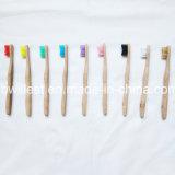 タケ歯ブラシの銘柄
