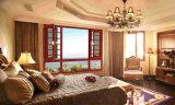 Окно Casement обеспеченностью качества американского типа супер с экраном насекомого