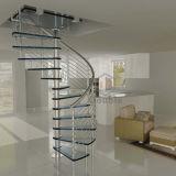 Mordenの家か商業ステンレス鋼の螺旋階段