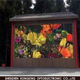 P8 Waterproof Outdoor Full Color LED Display for Advertizing