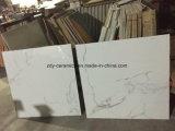De hete Tegel van de Steen van het Lichaam van het Bouwmateriaal Natuurlijke Volledige Marmeren