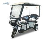 3-Wheel 60V800W Selbstrikscha-Philippinen-elektrisches Dreirad für Passagier Bangladesh