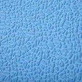 Couvre-tapis de verrouillage de mousse d'EVA avec de la glace et la neige