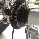 China feliz caliente de oro de 48V 500W de tres ruedas Neumático Fat Ebike