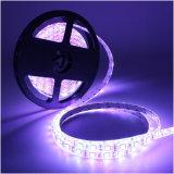 세륨과 RoHS 증명서를 가진 SMD 5050 LED 유연한 지구