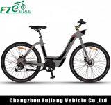Model Electric Bike新しい解放された通勤者の女性