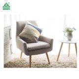 Shiyi 거실에서 이용되는 최신 판매 여가 의자