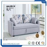 Sofa multifonctionnel de modèle moderne Cum le mécanisme de bâti, bâti de sofa se pliant de bâti d'eucalyptus