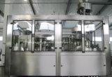 Compléter la chaîne de production assaisonnée automatique de jus