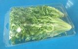 Grande contenitore impaccante di verdure di plastica d'attaccatura libero