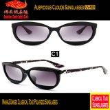 Sapo clássico unisex óculos de sol Mania2 polarizados