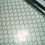Noire transparente en PVC Cartain grille anti-statique