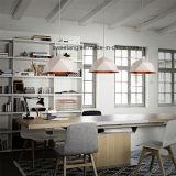 Innenhauptbeleuchtung, die hängende Lampe mit Aluminium hängt