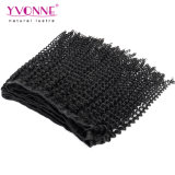 イボンヌ100%の加工されていないバージンのブラジルの毛のねじれたカーリーヘアーの織り方