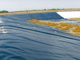 Charca de pescados impermeable del HDPE 1.5m m Geomembrane