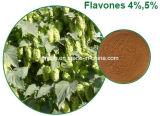 10:1 soluble en agua del extracto de la flor de los saltos de Xanthohumol el 1%~10%