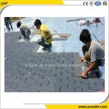 Assicella dell'asfalto di rinforzo vetroresina gotica di stile per l'impermeabilizzazione del tetto