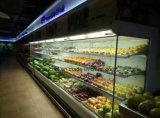 Dispositivo di raffreddamento aperto della visualizzazione del Merchandiser dell'aria aperta dei frigoriferi della visualizzazione della verdura del supermercato