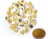 Polvo de la flor del guisante de mariposa del extracto de Perfumetea