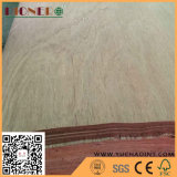 Natural Gurjan/Keruing Veneer as Plywood material