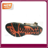Nuevo diseño de moda zapatos Sandalia para la venta
