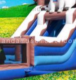 قابل للنفخ قطريّة دبّ موضوع ينشّف ماء/منزلق لعبة في فصل صيف