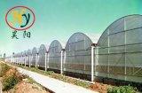 De Serre van de tuin voor het Plantaardige Planten van het Fruit en van de Bloem