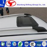 Spätester Entwurfs-elektrisches Fahrzeug, elektrisches Auto, Pround Auto durch Shifeng