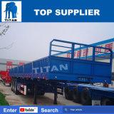 Titaan 3 de Semi Aanhangwagen van de Zijgevel van de Container van Assen 40FT