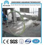 Tanque de peixes acrílico personalizado de Transaprent do projeto de Oceanarium