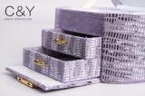 Rectángulo de almacenaje plástico de la joyería de Fashoin de la alta calidad