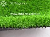 Prato inglese dello Synthetic di alta qualità 36mm per la decorazione (SUNQ-AL00100)