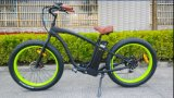 Ce Fat Tire Bicycle Electric pour Europ