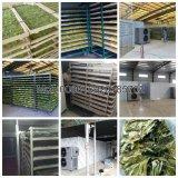 Máquina de processamento seca industrial dos peixes/gabinete de secagem da carne/máquina seca da carne