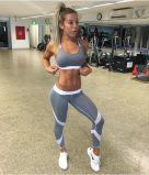Высокое качество Высокая поясная фитнес-йога Legging (3041)