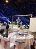 4X5m Bw het LEIDENE Gordijn van de Ster voor de Achtergronden van het Huwelijk van de Partij