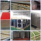 Déshydrateur végétal électrique sec de machine de séchage de nourriture de Kinkai