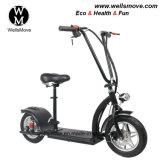 Wellsmove neuer Entwurfs-leichtes persönliches Transport-Fahrzeug, das elektrische Roller-Mobilität 300W faltet
