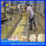 Vegetales Industrial Limpieza de la máquina lavadora de ajo (QD-QP4000-800)