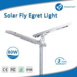 IP65에 의하여 증명서를 주는 통합 태양 동작 탐지기 램프 가로등