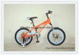 16inchはバイク、子供の自転車、16inch子供MTBのバイクをからかう、