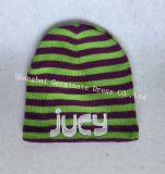 шлем нашивки 100%Acrylic & шарф (JYB336)