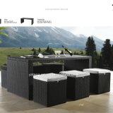 安い普及したデザイン一定棒を食事する屋外の庭の藤の家具は6-10person (YT187)によって腰掛けおよび表とセットした