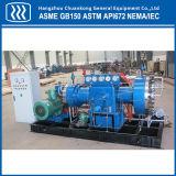 Compresor oxígeno-gas de la diapositiva industrial