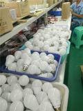 セリウムのRoHS公認LEDの電球9Wの球根