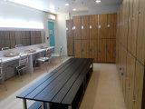 屋外の紫外線抵抗の更衣室2層のロッカー