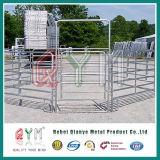 Frontière de sécurité remplie par fil peinte de ferme d'inducteur de bétail en métal de grille de tube