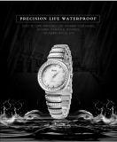 Montre imperméable à l'eau de quartz de petite de cadran de mode de montre de dames de Belbi surface occasionnelle de corrosion