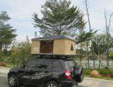 [فيبرغلسّ] قشرة قذيفة بناء و1 - 2 شخص خيمة نوع [مغّيولينا] سقف أعلى خيمة